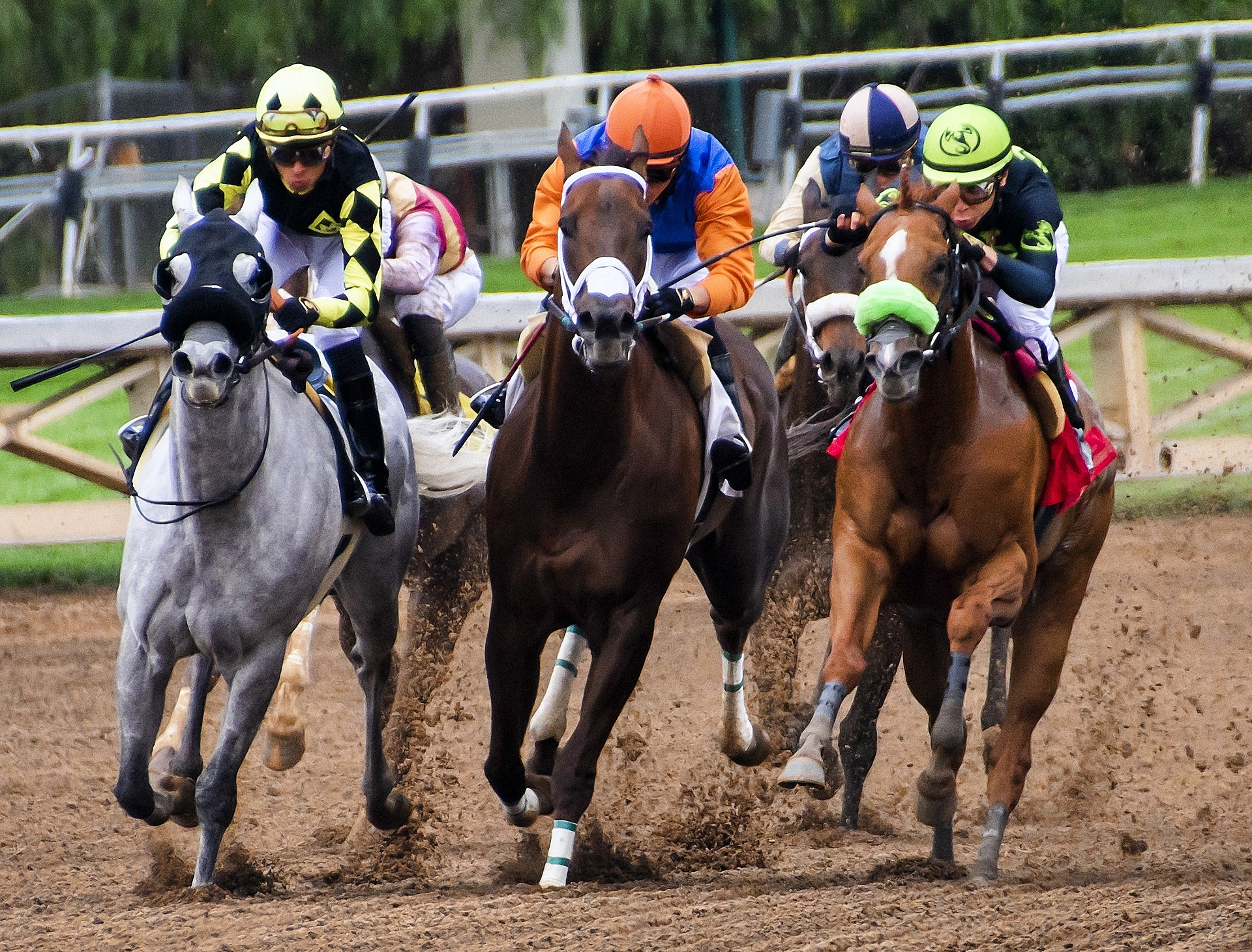 Harness racing has experienced both a decline and a resurgence.